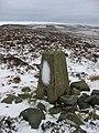 Long Crag triangulation pillar - geograph.org.uk - 844086.jpg