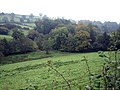 Looking towards Batcombe - geograph.org.uk - 585228.jpg