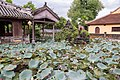 Lotus lake in Hue, Vietnam (25672760978).jpg