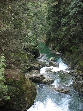 Lynn canyon park lynn creek.jpg