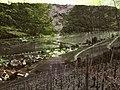 Müden a.d. Mosel - panoramio - H-NS LOOSEN.jpg