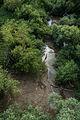 MK37851 Naturschutzgebiet Rettbergsaue.jpg