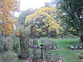 MSU 2014 Botanical Garden E.jpg
