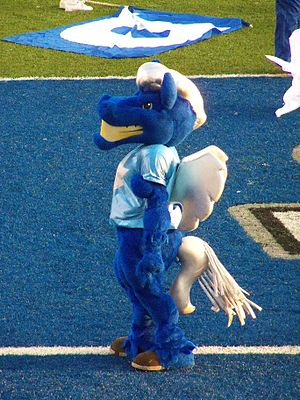 "Middle Tennessee Blue Raiders - ""Lightning"", MTSU's mascot, prior to a football game"
