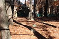 Macedonia African Methodist Church Cemetery, Johns Creek, GA Nov 2017 3.jpg