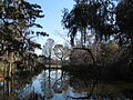Magnolia Plantation and Gardens - Charleston, South Carolina (8555380135).jpg