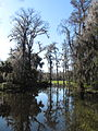 Magnolia Plantation and Gardens - Charleston, South Carolina (8555485783).jpg