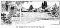 Manual of Gardening fig043.png