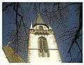March Emmendingen - Master Habitat Rhine Valley Photography - panoramio.jpg