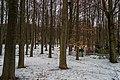 Mariánské Lázně - Třebízkého - Martinův park - View East.jpg