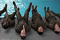 Marines endure advanced water survival training 160804-M-OC926-025.jpg