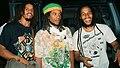 Marley Brothers... Stephen, Robbie, Ziggy.jpg