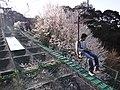 Marunouchi, Matsuyama, Ehime Prefecture 790-0008, Japan - panoramio (23).jpg