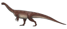 Massospondylus reconstruction.png