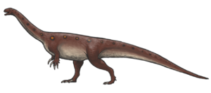 "Clarens, Free State - Simple reconstruction of Massospondylus carinatus, the early Jurassic ""prosauropod"" from Africa"