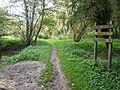 Meden Trail Nature Reserve - geograph.org.uk - 569185.jpg