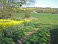 Merrington Mill Farm - geograph.org.uk - 408658.jpg