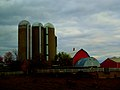 Meyer Family Dairy Farm - panoramio.jpg