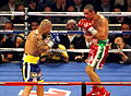 Miguel Cotto vs. Antonio Margarito II, during the fight 2.jpg