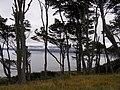 Mirada alEstrecho de Magallanes,Punta Arenas, Chile - panoramio.jpg