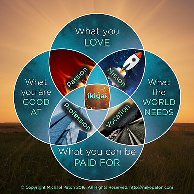 A Modern Re-take on the ikigai diagram