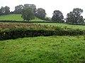 Monmurry, Brookeborough - geograph.org.uk - 912459.jpg