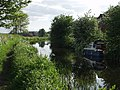 Montgomery Canal approaches Y Trallwng. (Welshpool) - geograph.org.uk - 52473.jpg