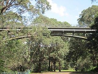 Mosman Bay Sewage Aqueduct