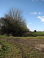 Muddy entrance into field - geograph.org.uk - 706359.jpg
