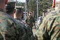 NATO Allies begin largest Exercise Summer Shield 150322-M-EG384-004.jpg