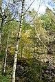 NSG Steinbruch Holzmühle (108).jpg