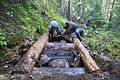 National Public Lands Day 2014 at Mount Rainier National Park (055), Narada.jpg