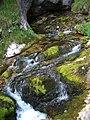 Nationalpark Berchtesgaden.jpg