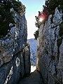 Nationalpark Berchtesgaden - Am Kehlsteinhaus Weg zur Aussicht auf den Hohen Göll.jpg