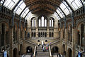 Natural History Museum, inside 2nd floor.jpg