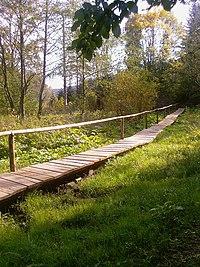 Nature reserve in Mójka 04.jpg