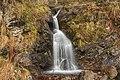 Naturschutzgebiet Gletscherkessel Präg - Prägbachwasserfall am Bernauer Kreuz.jpg