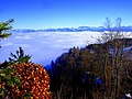Nebelmeer - panoramio.jpg