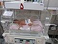 Neonatologia sekcio de hospitalo en Maŝhado (Irano) 003.jpg