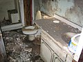 New Orleans Post-Katrina Bathroom 02.jpg