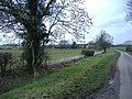 New hedge on Crudwell Lane - geograph.org.uk - 342860.jpg