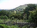 Newlands Valley - geograph.org.uk - 651336.jpg
