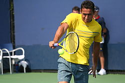 Nicolás Almagro at the 2010 US Open 01.jpg