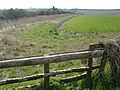 North of Badbury Rings, Dorset - geograph.org.uk - 150895.jpg