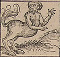 Nuremberg chronicles - Strange People - Half Horse (XIIv).jpg
