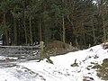 Offa's Dyke at Springhill Farm - geograph.org.uk - 1198037.jpg