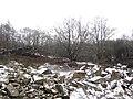 Old quarry face - Feb 2012 - panoramio.jpg