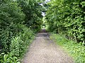 Old railway line near Brading - geograph.org.uk - 484521.jpg