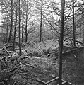 Ondergronds hol voor onderduikers, waar de lijken op 10 april 1945 werden aanget, Bestanddeelnr 900-3003.jpg
