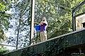 Ouwehands Dierenpark (15039101046).jpg